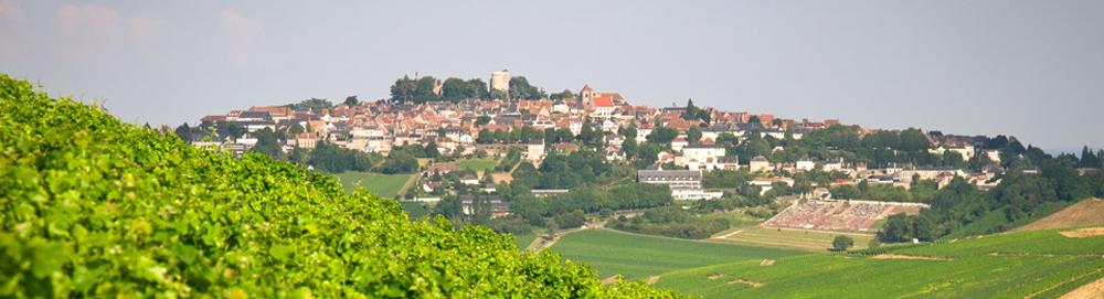 Domaine Bailly Reverdy Sancerre Vin Blanc